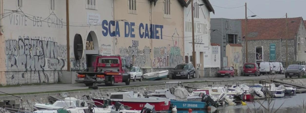 AVEC DEMI PORTION, DE L'AUTRE CÔTÉ DE LA PASSERELLE